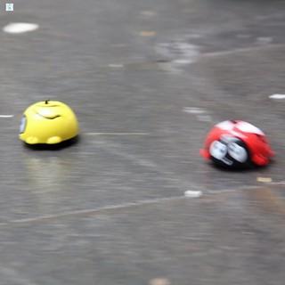 3 con bọ siêu tốc chạy đà 3907 HÀNG CÒN TRONG KHO