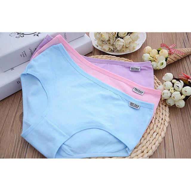 compo 5 quần quần lót Pulo ất Mỹ | SaleOff247