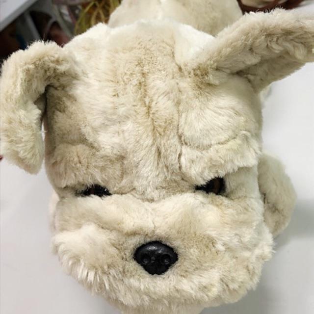 Gấu bông chó mặt xệ(hàng có sẳn)