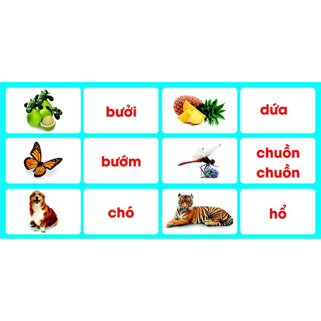 Bộ Flash card Từ đơn - Từ ghép song ngữ Việt - Anh