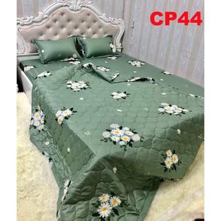 Vỏ gối ôm Cotton Poly siêu rẻ mã CP44 Full 20 mẫu