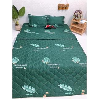 chăn hè poly cotton Trần bông 3 lớp nhiều mẫu được chọn màu