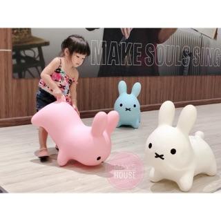 Thỏ nhún xuất Hàn