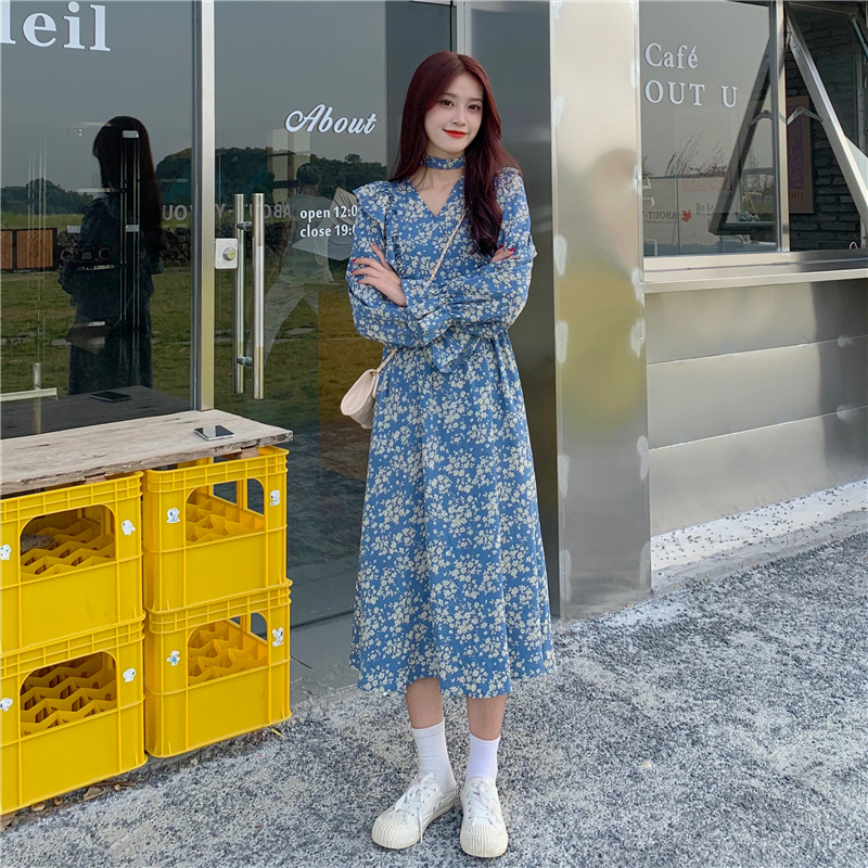 Large size 4XL ladies chiffon long skirt lantern sleeve A line autumn new style elegant retro V-neck winter floral skirt dress
