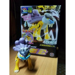 Mô hình pokemon_Raikou Model Kit