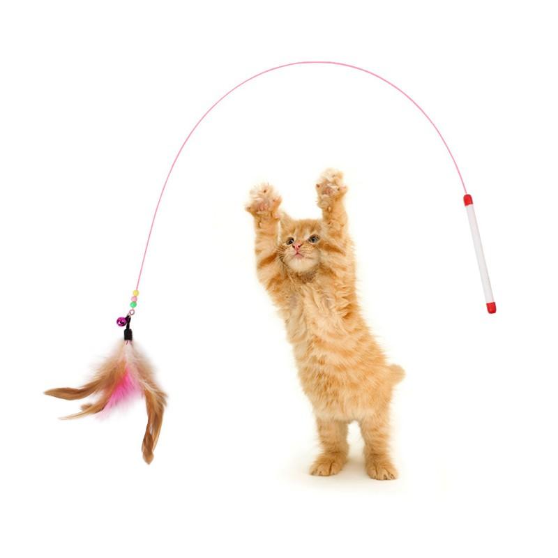 Đồ chơi cho mèo - cần câu lông vũ có chuông