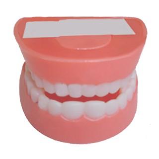 Dạy bé đánh răng bằng đồ dạy học cụ thể