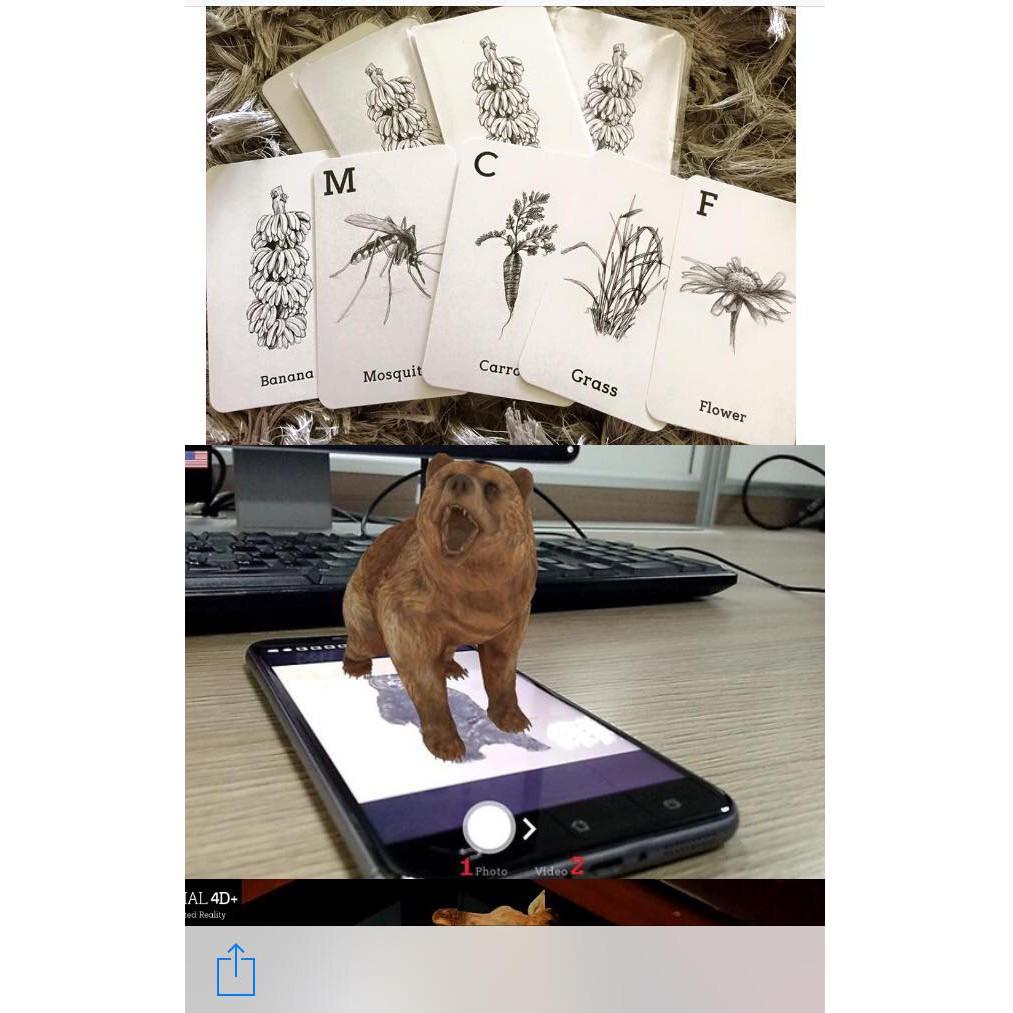 Thẻ học động vật thông minh Animal 4D Freeship – Tặng kèm 1 lọ tinh dầu thiên nhiên