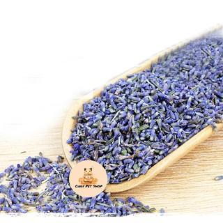 Hoa lavender sấy khô thanh lọc cơ thể cho Hamster thumbnail