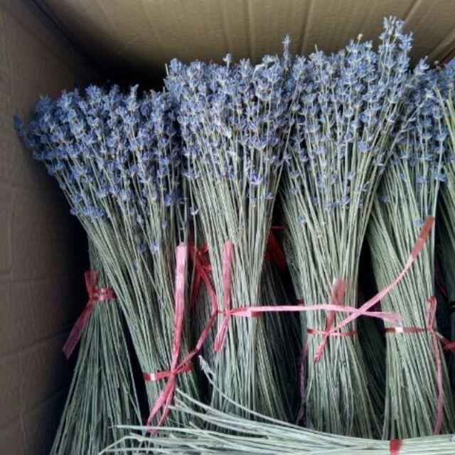 Bó hoa Oải Hương - Lavender khô 130g (Nhập Pháp và Nhập Anh)