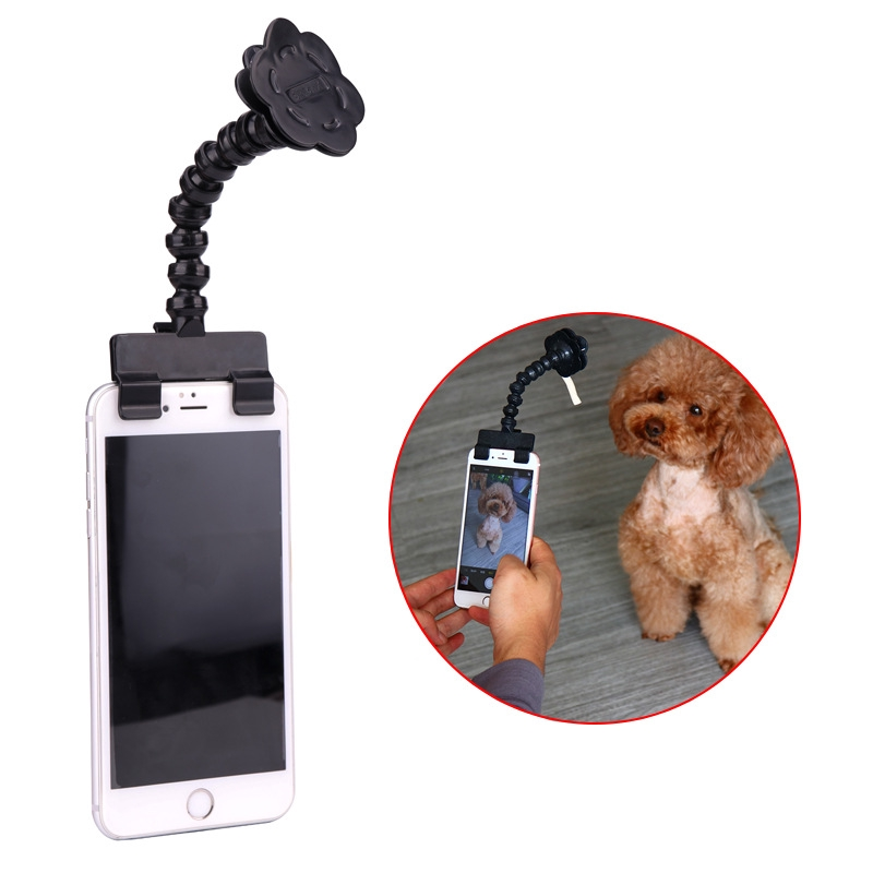 ống kính chụp hình tự sướng cho chó mèo