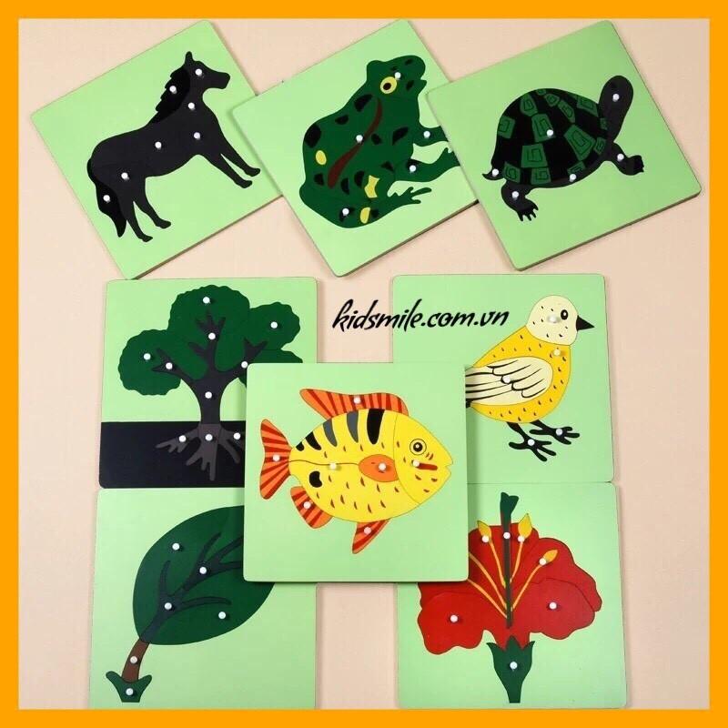 Đồ Chơi Gỗ Thông Minh Tranh Ghép Sinh Vật 8 Loại Montessori (Có Bán Rời)