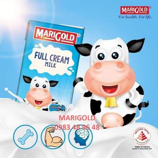 Sữa MARIGOLD nguyên kem không đường thùng 24 hộp 200ml