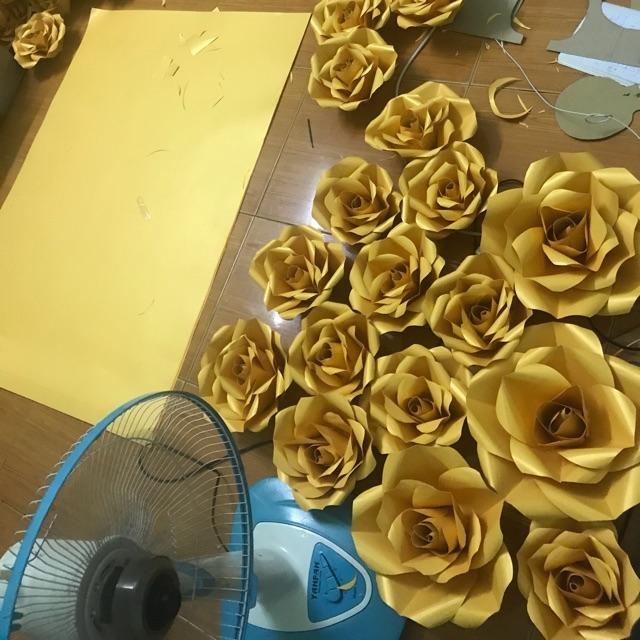 Hoa hồng backrop