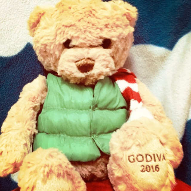 Gấu mặc áo phao