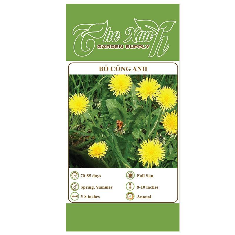 Combo 10 gói hạt giống hoa bồ công anh The Xanh Garden Supply