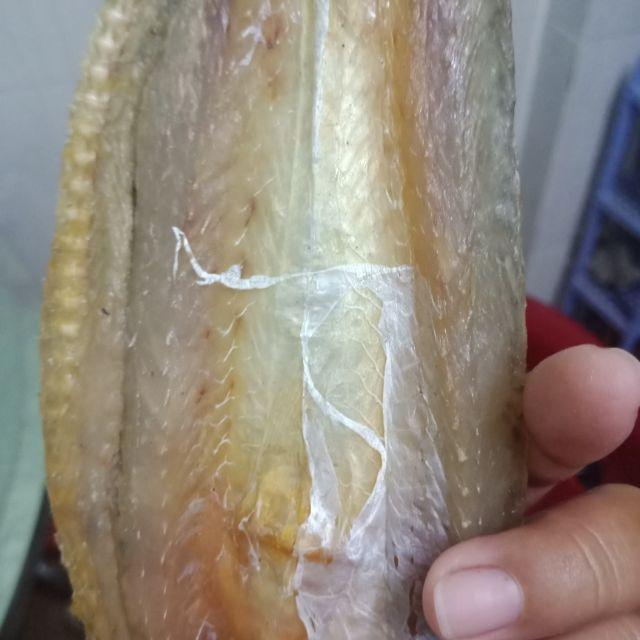 Khô cá Mối nhà làm