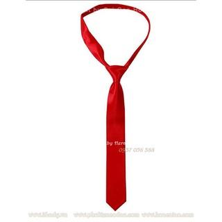 Cà vạt nam CV0001RE01S1