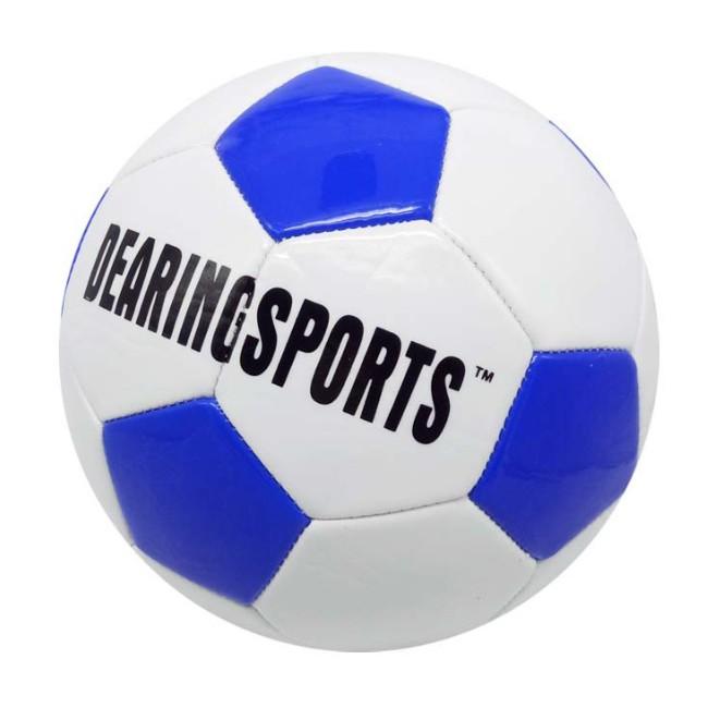 Trái bóng đá sân cỏ 11 người Dream Sports
