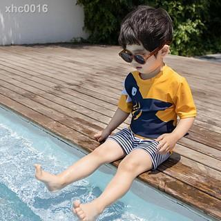 Bộ Đồ Bơi Tay Ngắn In Hình Cá Mập Dễ Thương Kiểu Hàn Quốc Cho Bé Trai