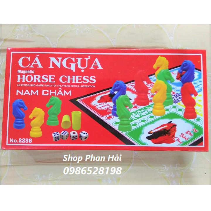 Bộ đồ chơi cá ngựa nam châm chất lượng cao