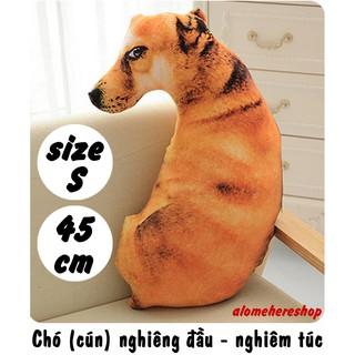 Chó cún nghiêng đầu liếc nhìn – nghiêm túc Size S 45cm