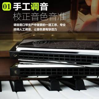 kèn harmonica 12 lỗ chuyên nghiệp