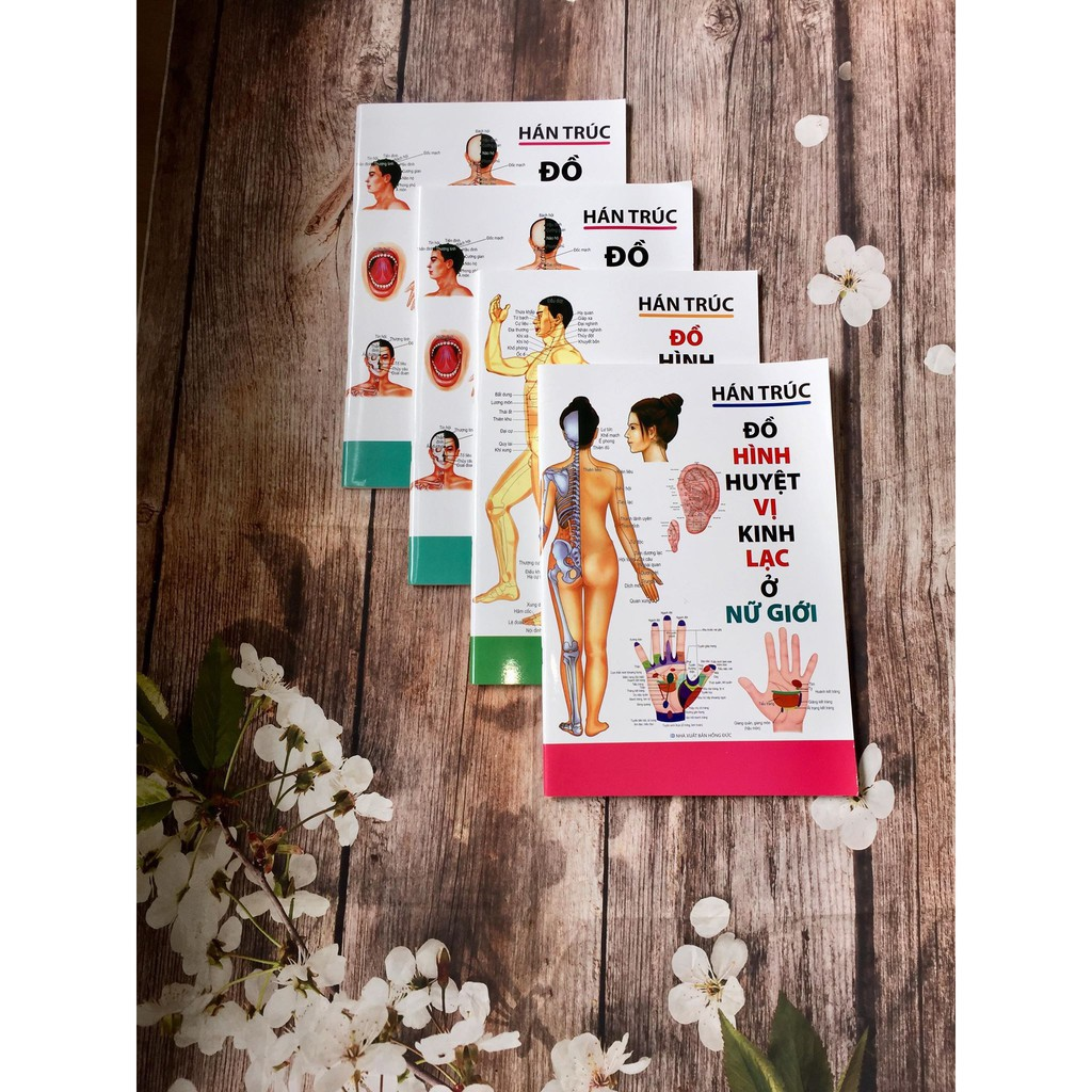 Sách - Đồ Hình Huyệt vị kinh lạc ở Nữ Giới (Hán Trúc) Gigabook