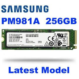 Ổ CỨNG SSD M2 SAMSUNG PM981A 256GB 512GB M2 NVME PCIE NEW 100% OEM – Bảo hành 36 THÁNG