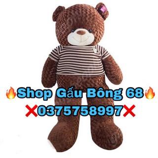 Gấu Bông Teddy 1m4 Khổ Vải HÀNG CHUẨN LOẠI 1 cao 1m2 (Giá Huỷ Diệt),HOT