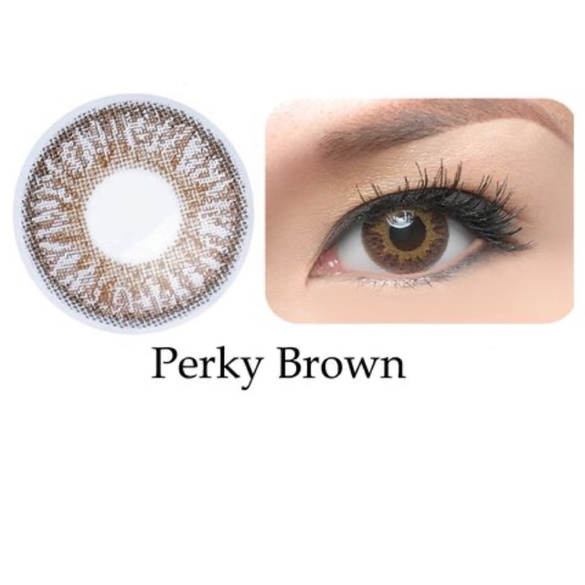 Kính áp tròng Freshkon Colors Fusion 3 tháng – Perky Brown