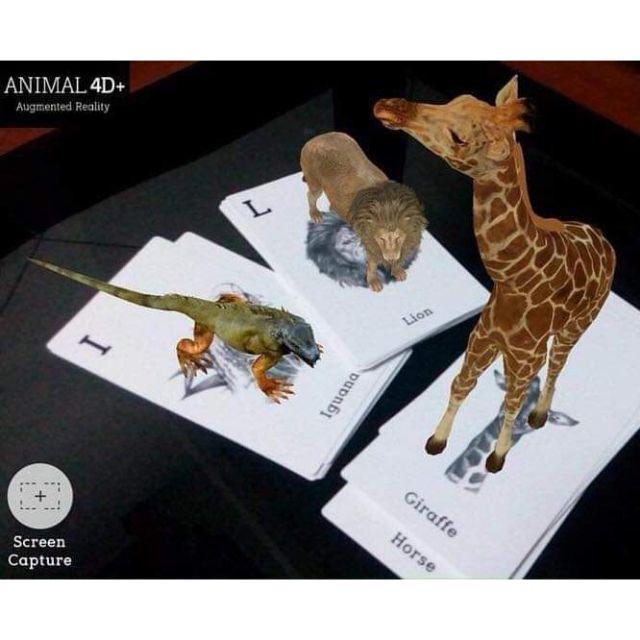 Bộ thẻ animal 4D