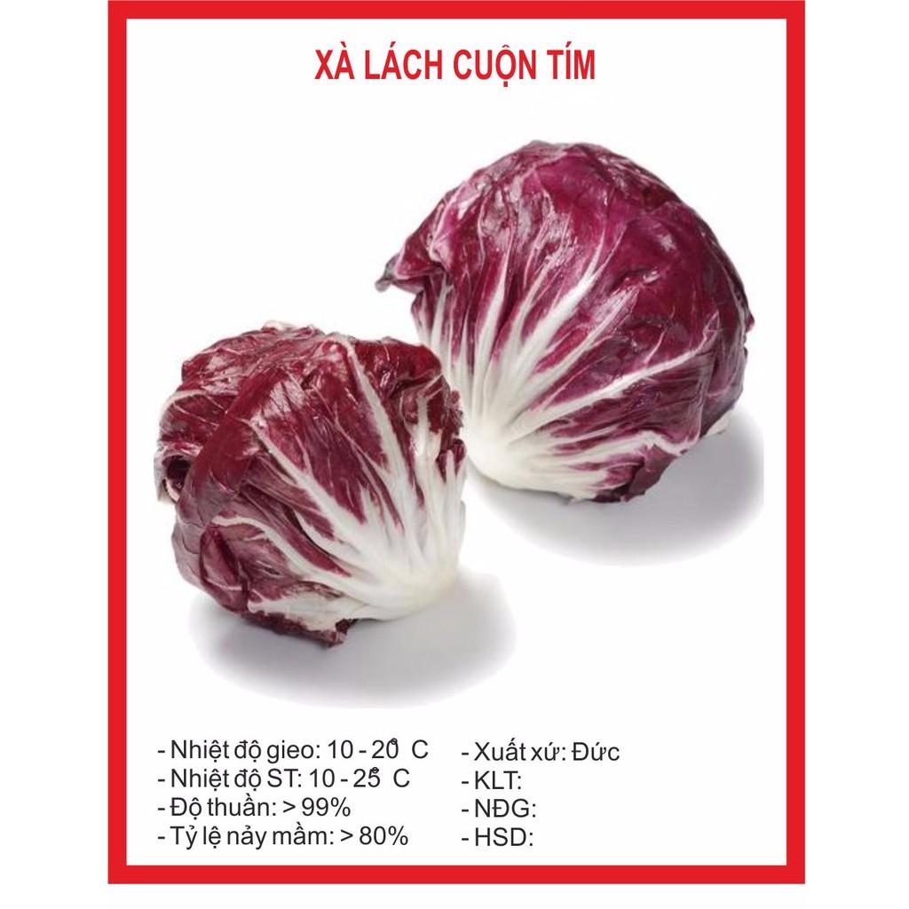 Xà Lách Cuộn Tím 0.5gr