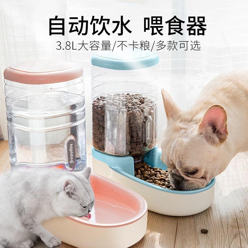 máy uống nước tự động cho thú cưng 3.8 l - 15134424 , 2572985544 , 322_2572985544 , 290200 , may-uong-nuoc-tu-dong-cho-thu-cung-3.8-l-322_2572985544 , shopee.vn , máy uống nước tự động cho thú cưng 3.8 l