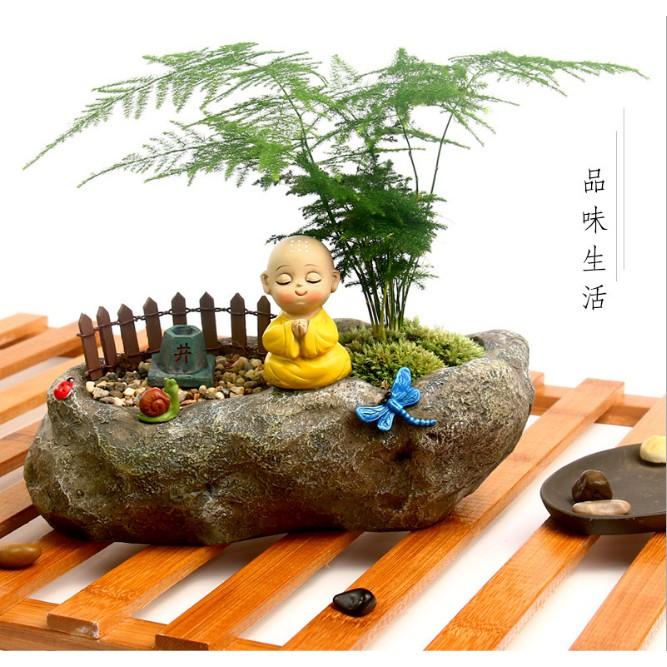 Chậu trồng cây dáng thiền sư Tâm tịnh vô ưu - cho sen đá, bonsai