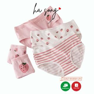Quần lót cotton nữ dễ thương họa tiết quả dâu QL96-Ha Song Shop thumbnail