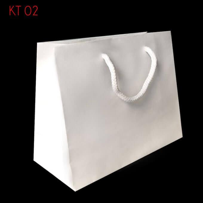 10 Túi giấy trơn KT02 ( 14 x 18 x 8)
