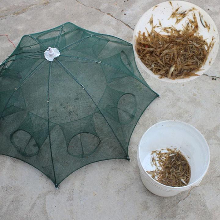 Lưới bát quái chuyên gia bắt cá (8 lỗ) - lưới đánh bắt cá tiện lợi
