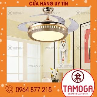 Quạt đèn trần D29 - quạt trần, đèn ốp trần. quạt đèn trần phòng khách ,quạt đèn trần phòng ngủ TAMOGA DQ 9041