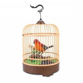 Lồng chim cảm ứng biết hót và nhún nhảy khi có tiếng động