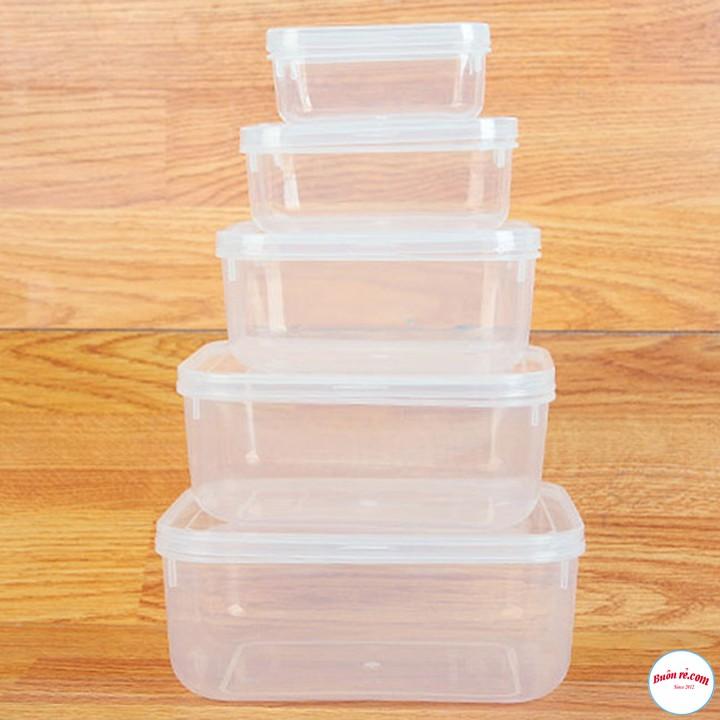 Bộ 5 hộp Lạnh Bầu đựng đồ đông - hộp nhựa đựng thức ăn Song Long lạnh bầu cao cấp ( MS : 2288) br00312
