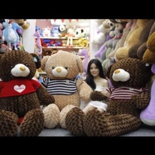 Gấu bông Teddy khổ vải 1m6 (Size thật 1m4)