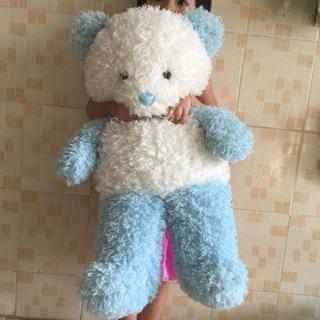 Gấu xanh 70cm