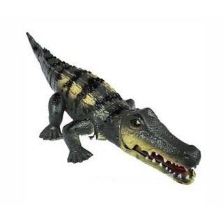 cá sấu chạy pin
