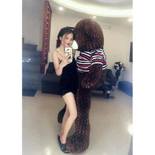 Gấu bông Teddy Cao Cấp khổ vải 2m Cao 1,8m màu nâu hàng VNXK