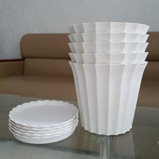 Combo 5 chậu trồng hoa khía nhựa trắng 18cm kèm 5 đĩa lót chậu