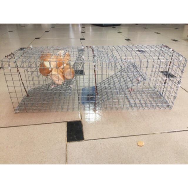 Lồng bẫy chuột liên hoàn (loại lớn) (có kèm ảnh feedback của khách)