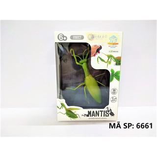 Bọ ngựa điều khiển mantis (Pin Lithium)