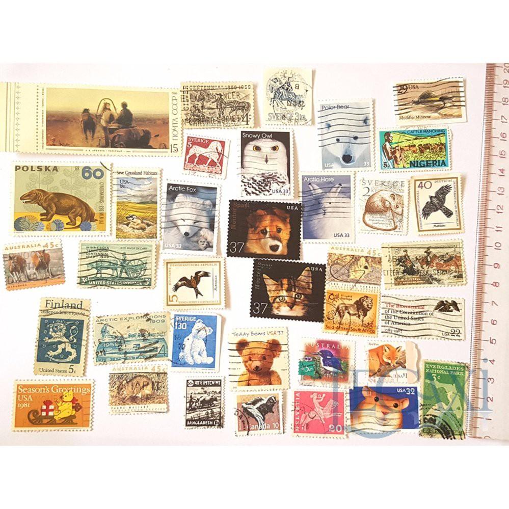Bộ Sưu Tập Tem Legaxi Chủ đề Động vật x 50 tem