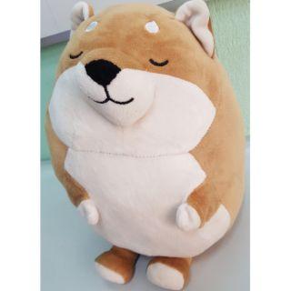 Gấu bông chó shiba miniso
